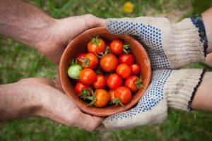 Appel à Projets ECO-CONCEPTION DANS L'AGROALIMENTAIRE - PERIMETRE FRANCE 2